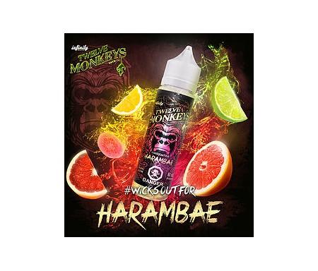 Harambae de chez Twelve Monkeys, un mélange fruité de citron, de citron vert, pamplemousse et orange et de goyave.