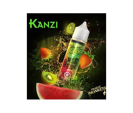 Kanzi de chez Twelve Monkeys en 50 ml est un e-liquide aux saveurs de pastèque, de fraise et de kiwi.