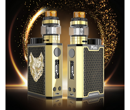 Kit SNOWWOLF MINI 100 W - SNOWWOLF
